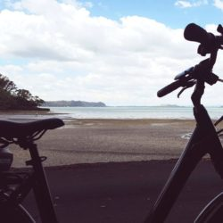 edbikes.co.nz